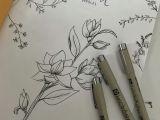 Drawing Notebook Ideas Plants Doodles Plants Draw Botanical Botanicalillustration