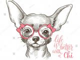 Drawing Of A Baby Dog Pin by Sabi A 2108 On Chihuahua A Pinterest Dog Doggies and Animal
