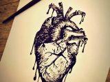 Drawing Of A Bleeding Heart Dongetrabi Black Rose Drawing Bleeding Images