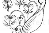 Drawing Of A Bleeding Heart Tattoo Tattoo Pinterest Tattoos Vine Tattoos and Heart Flower