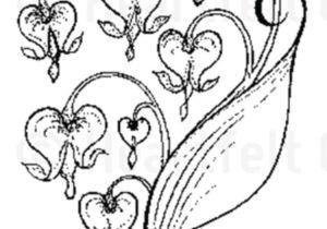 Drawing Of A Bleeding Heart Tattoo Tattoo Pinterest Tattoos Vine Tattoos and Heart Flower