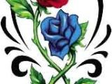 Drawing Of A Blue Rose Red Blue Rose Tattoo Tattooforaweek Red Rose Pintura