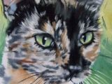 Drawing Of A Calico Cat Pin by Ann Wieber On Cat Paintings Art Cat Art Cats Art