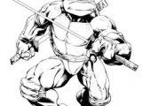 Drawing Of A Cartoon Ninja 700 Best Ninja Turtles Images Ninja Turtles Teenage Mutant Ninja