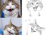 Drawing Of A Cat and Dog is This by Vixiearts Cats and Dogs Pinterest Drawings