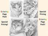 Drawing Of A Cat Images Fresh Coloring Page Of A Cat Creditoparataxi Com