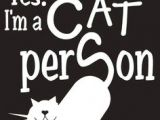 Drawing Of A Cat Person 10499 Best Cat Person A Images Funny Cats Funny Kitties Pretty Cats