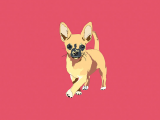 Drawing Of A Chihuahua Dog Chihuahua the Doggo Collection Pinterest Collection Chihuahua