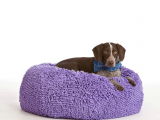 Drawing Of A Dog Bed My Dog Loves This Bean Bag He Lounges On It Most Of the Day and No
