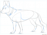 Drawing Of A Dog for Beginners How to Draw A German Shepherd Dog Step by Step Drawing Tutorials