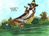 Drawing Of A Dog Jumping No 124 Lana Bear Illustration original Art Print Kelpie