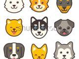 Drawing Of A Dog S Face Cartoon Dog Faces Set Different Breeds Of Dogs Husky Corgi Pug
