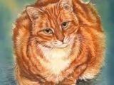 Drawing Of A Ginger Cat Images Art Of Anne Marsh Bing Images Anne Marsh In 2018