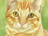Drawing Of A Ginger Cat orange Tabby Cat Art Print Cat Watercolor Colored Pencil Print