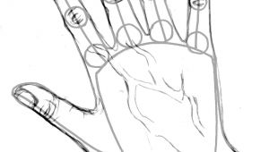 Drawing Of A Hands Step by Step How to Draw Hands