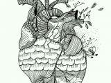 Drawing Of A Heart Human Pin by Seda atlar A On 2018 Heart Art Art Drawings