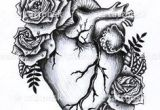 Drawing Of A Heart with Roses 1596 Best Anatomical Heart Images Anatomical Heart Human Heart