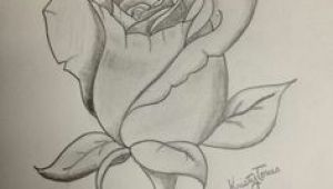 Drawing Of A Open Rose Tatoo Art Rose Rose Tattoo Design by Alyx Wilson society6 Hand