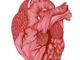 Drawing Of A Real Life Heart 1875 Best Human Heart Images In 2019 Feminist Art Embroidery
