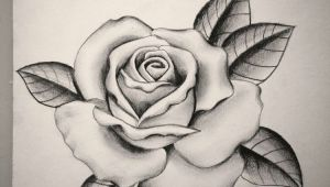 Drawing Of A Rose In A Hand Pin by Sydney Mayes On Tattoo Pinterest Tattoos Rose Tattoos
