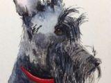 Drawing Of A Scottie Dog 96 Best Archie the Scottie Images Scottish Terrier Scottie Dogs