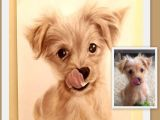 Drawing Of A Small Dog if You Find An original Idea for Your Pet or for An Animal Lover if