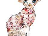 Drawing Of A Sphynx Cat 100 Tumblr Artsy Pinterest Sphynx Cat Art and Sphynx Cat