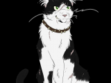 Drawing Of A Warrior Cat Warrior Cats 038 Bone by Kuroi Hitsuji Warrior Cats Pinterest