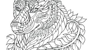Drawing Of A White Wolf Fresh Black and White Wolf Coloring Pages Nicho Me
