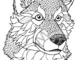 Drawing Of A Wolf Face Wolf Coloring Pages Printable Best Of 26 Coloring Pages Wolves