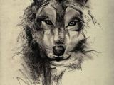 Drawing Of A Wolf Face Wolf Face Sketch Art Wallpaper Wolves Wolf Tattoos Tattoos