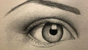 Drawing Of An Eye and Eyebrow Eye Sketch Black White Drawing Pinterest Zeichnen