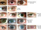 Drawing Of An Eye Colour the Eye Color Chart Beauty Secrets Pinterest Eye Color Chart