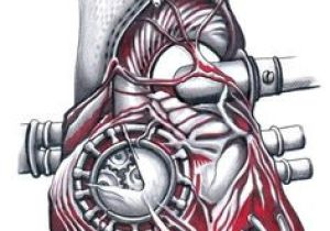 Drawing Of Artificial Heart 126 Best Biomechanical Images Drawings Arm Tattoo Sleeve Tattoos
