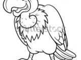 Drawing Of Cartoon Vulture 62 Best Vultures Images Vulture Buzzard Birds