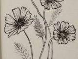 Drawing Of Cosmos Flower Cosmos Flower Drawingsi E I I E I E I E E Tattoos In 2019
