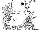 Drawing Of Cute Duck Cute Coloring Pages New Leprechaun Coloring Pages I Pinimg 736x 0d