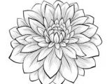 Drawing Of Dahlia Flowers 273 Best Dahlia Tattoo Images Awesome Tattoos Coolest Tattoo