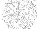 Drawing Of Dahlia Flowers Pin by Lynn Dragonfly On Drawing Doodles and Dangles Pinterest