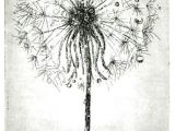Drawing Of Dandelion Flower Dandelion Root Drawing Google Search Artsy Pinterest