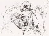 Drawing Of Datura Flower Love In Nature Pen and Ink Drawing Woodburning Ideas Drawings