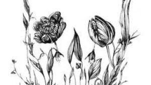 Drawing Of Dead Flowers 228 Best Dead Flowerz Images Mirror Mirror Framing Mirrors Huge