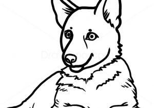 Drawing Of Dog German Shepherd Easy Easy Step by Step Drawing Of A Dog How to Draw Puppy German Shepherd