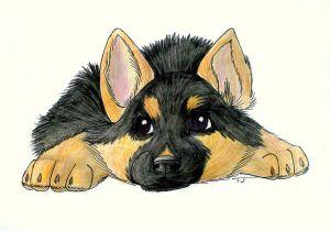 Drawing Of Dog German Shepherd Easy German Shepherd Drawing Puppy Google Search German Shepherd