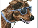 Drawing Of Dog with Sunglasses Brindle Dog In Blue Sunglasses Watercolor Art Print Unframed 8 X 10