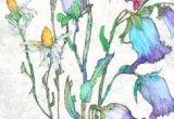 Drawing Of Flower Field 700 Best Art Watercolor Flowers Images Flower Watercolor