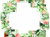 Drawing Of Flower Frame Pin by Jasmina Lebar On Illustration 3 Pinterest Drawings