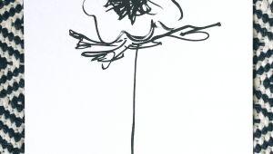 Drawing Of Flower Shop Floral Print Anemone Flower Print Floral Illustration Flower