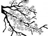 Drawing Of Flower Tree Sakura Bloom Drawing Lotus Blossom Coloring Page Full Bloom