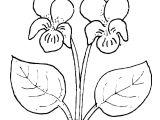 Drawing Of Flower Vase for Kid 19 Awesome White Single Flower Vase Bogekompresorturkiye Com
